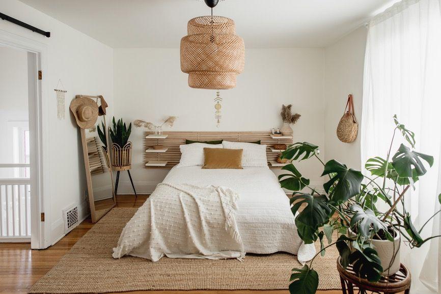 piante che purificano aria in camera da letto